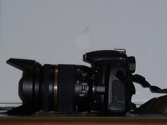 DSCF6695001.jpg